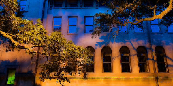 Photograph - Green Window by Renee Sullivan