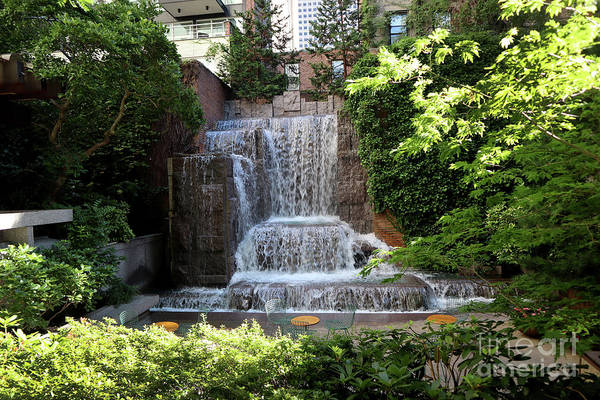 Photograph - Greenacre Pocket Park by Steven Spak