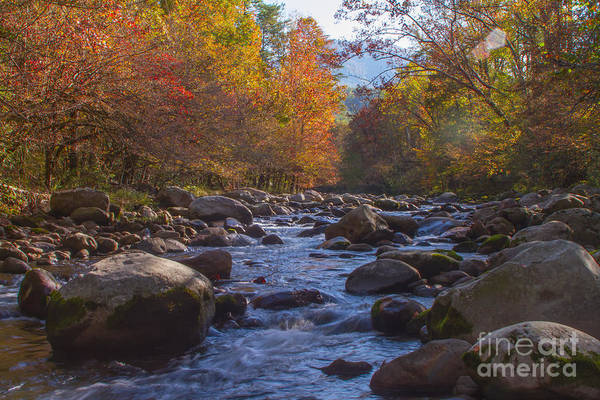 Photograph - Greenbriar Creek by Photography by Laura Lee
