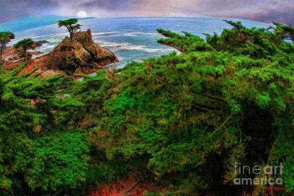 Photograph - Greenery And The Lone Cypress  by Blake Richards