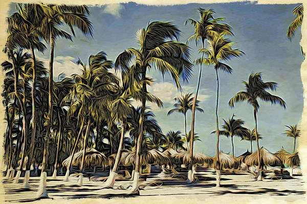 Photograph - Greetings From Aruba by Alice Gipson