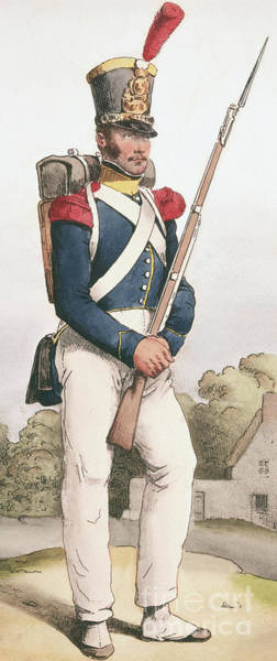 Wall Art - Painting - Grenadier Guard, 1824 by Joseph-Louis-Hippolyte Bellange