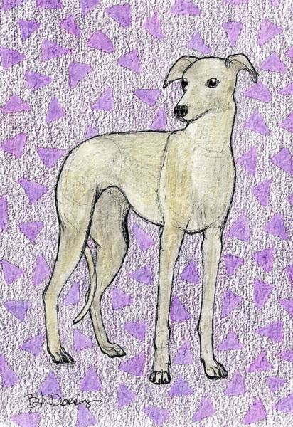Sight Hound Drawing - Greyhound by Brittany Dorris
