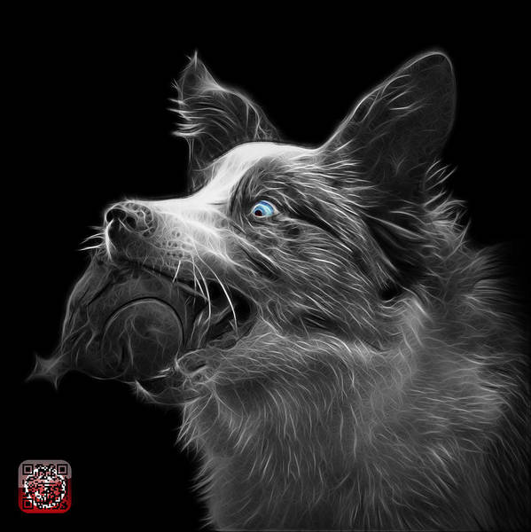 Painting - Greyscale Border Collie -  Elska - 9847 - Bb by James Ahn