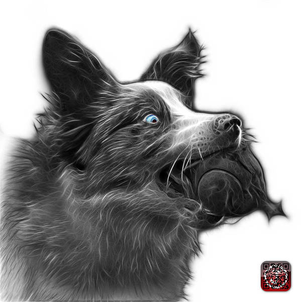 Painting - Greyscale Border Collie - Elska -  9847 - Wb by James Ahn