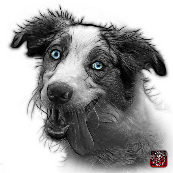 Painting - Greyscale Merle Australian Shepherd - 2136 - Wb by James Ahn