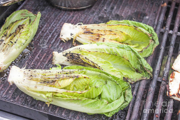 Salad Dressing Photograph - Grilled Romaine Salad by D R