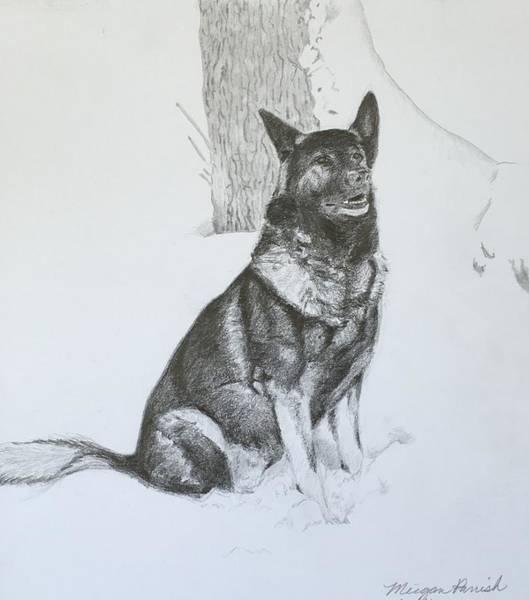 German Shepherd Drawing - Grim The Gsd by Meigan Parrish