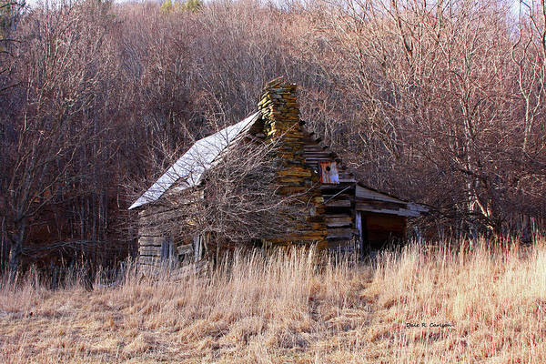 Photograph - Grimes Cabin by Dale R Carlson
