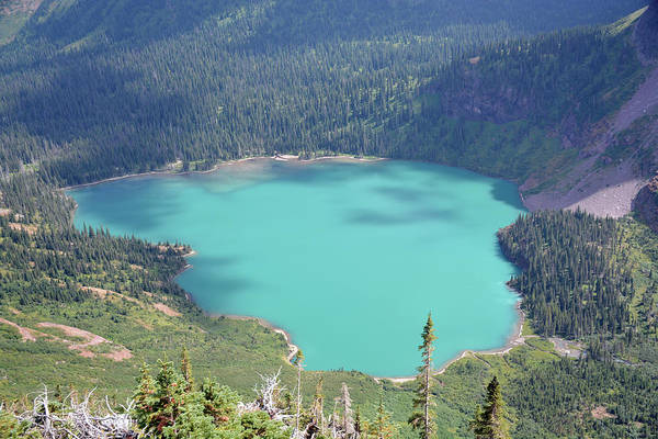 Photograph - Grinnell Lake Blues by Bruce Gourley