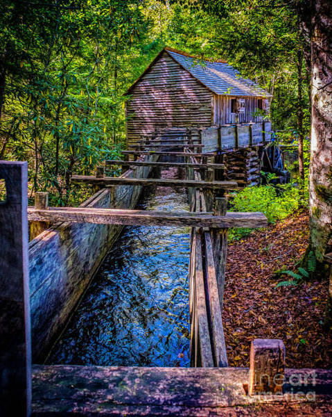 Photograph - Grist Mill In Cades Cove by Nick Zelinsky