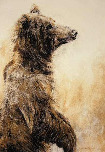 Fur Painting - Grizzly Bear 2 by Odile Kidd