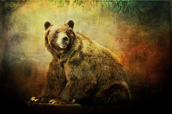 Painting - Grizzly Bear In Morning Sun by Christina VanGinkel