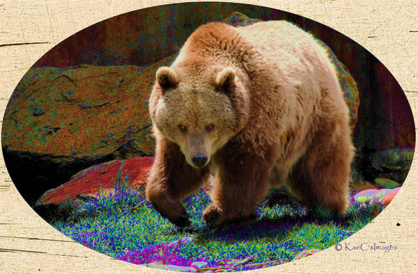 Grizzly Bears Digital Art - Grizzly Bear With Enhanced Background by Kae Cheatham