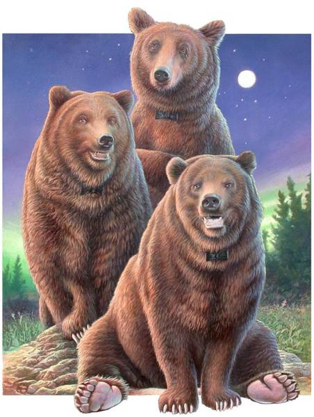 Hans Droog Wall Art - Painting - Grizzly Bears In Starry Night by Hans Droog