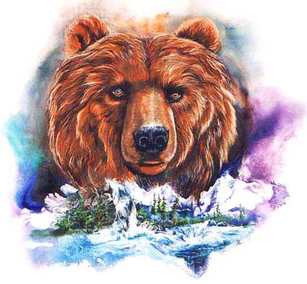 Painting - Grizzly by Sherry Shipley