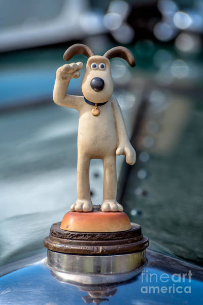 Grill Photograph - Gromit by Adrian Evans