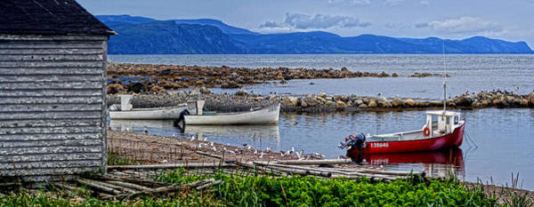Gros Morne Photograph - Gros Morne Fishermans Cove by Robin Clarke