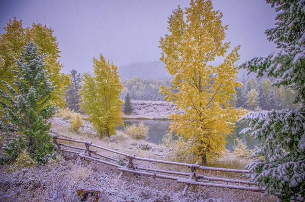Photograph - Gros Ventre Grand Teton Fall Snowfall by Scott McGuire