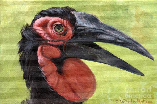 Hornbill Painting - Ground Hornbill by Svetlana Ledneva-Schukina