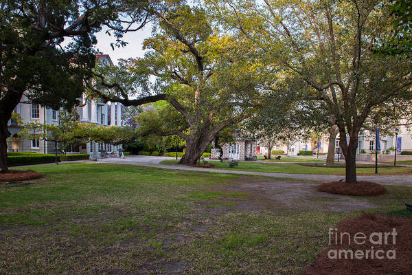 Photograph - Grounds Of Ashley Hall School by Dale Powell