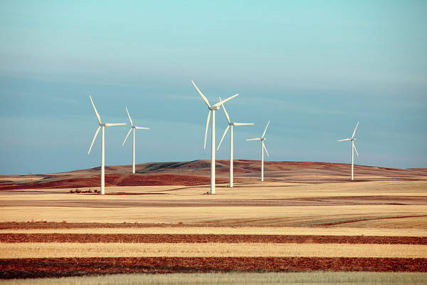 Wind Farm Photograph - Group Of Turbines by Todd Klassy