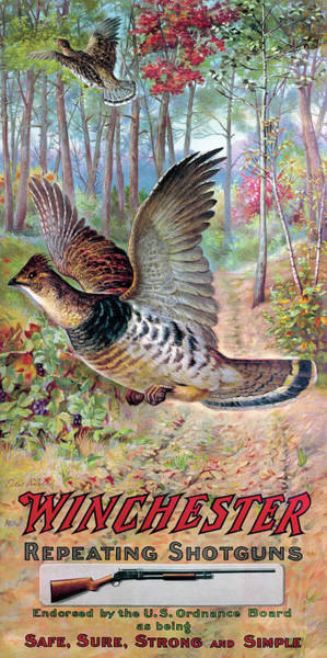 Painting - Grouse On The Wing by Edw Knobel
