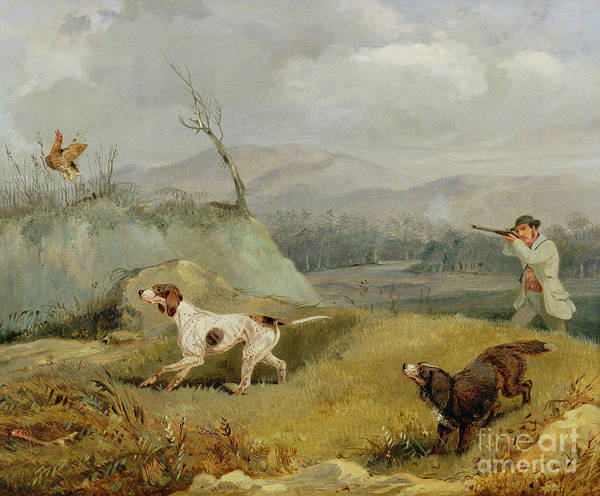 Fowl Painting - Grouse Shooting  by Henry Thomas Alken