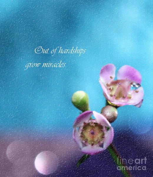 Saying Photograph - Grow Miracles by Krissy Katsimbras