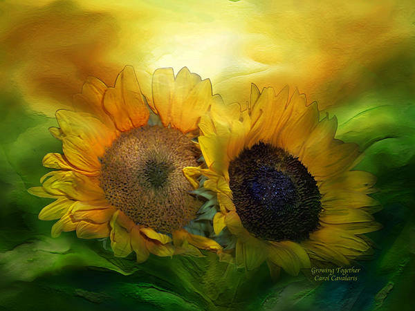 Mixed Media - Growing Together by Carol Cavalaris