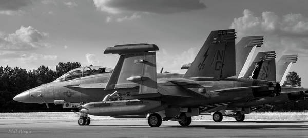 Photograph - Growlers Getting Ready For Departure by Philip Rispin