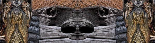 Digital Art - Growling Bark by Becky Titus