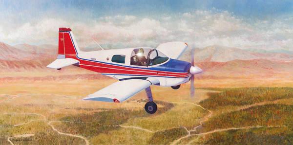 Painting - Grumman 1aa-1b  by Douglas Castleman