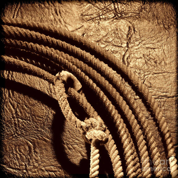 Photograph - Grunge Lasso by American West Legend By Olivier Le Queinec