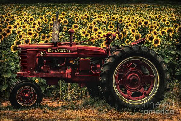 Digital Art - Grunged Red Farmall Tractor  by Barbara Bowen