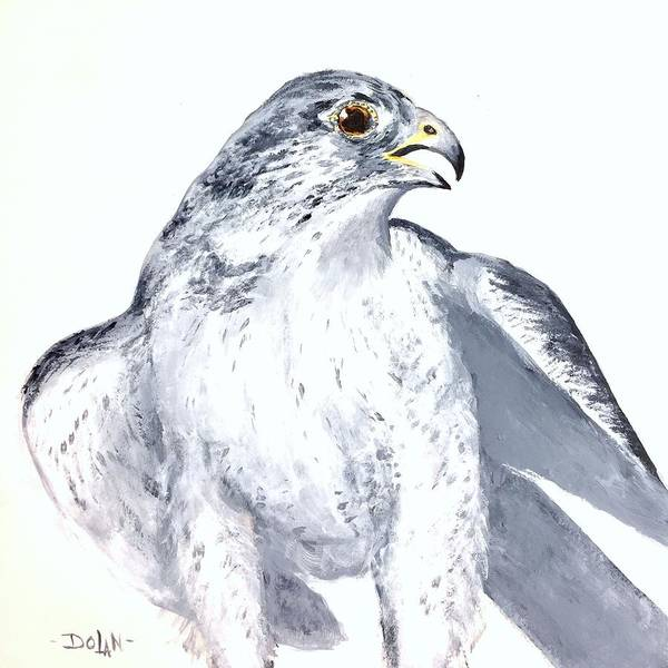 Painting - Gryfalcon Portrait by Pat Dolan