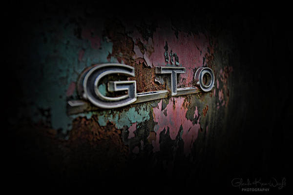 Photograph - Gto Emblem by Glenda Wright