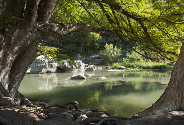 Photograph - Guadalupe River by Brian Kinney