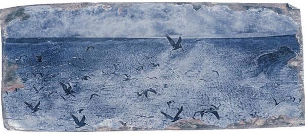 Digital Art - Gualala Birds by Mark Holcomb