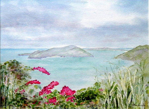 Painting - Guana Island by Diane Kirk