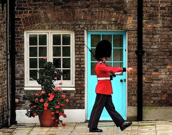 Photograph - Guard Duty by Coleman Mattingly