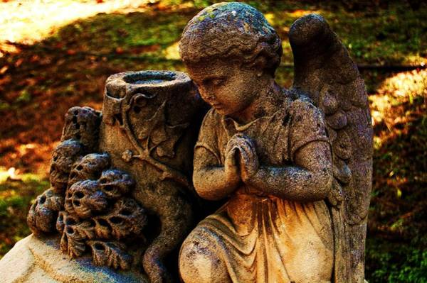 Photograph - Guardian Angel by Helen Carson