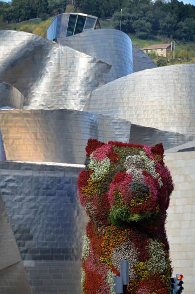 Photograph - Guggenheim Museum Bilbao - 2 by RicardMN Photography
