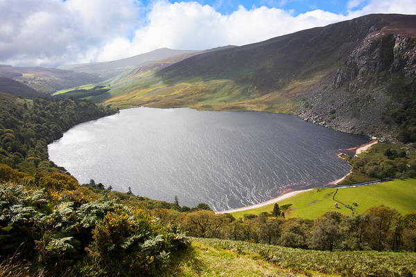 Heath Photograph - Guinness Lake In Wicklow Mountains  Ireland by Semmick Photo