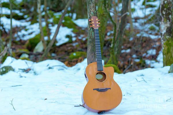 Photograph - Guitar by Mats Silvan