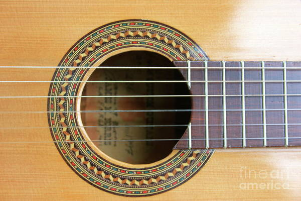 Photograph - Guitar Rosette by The Art of Alice Terrill