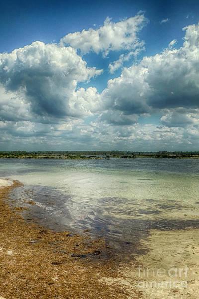 Photograph - Gulf Beach Beauty by Judy Hall-Folde