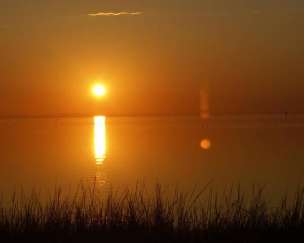 Photograph - Gulf Coast Sunset by Marty Koch