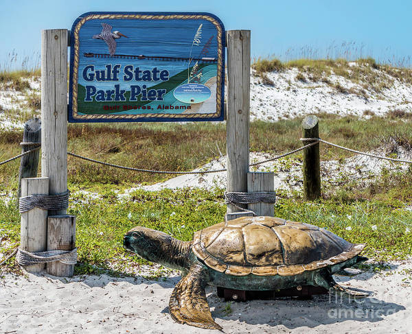Photograph - Gulf Shores Al Beach And Pier Turtle 1603a by Ricardos Creations
