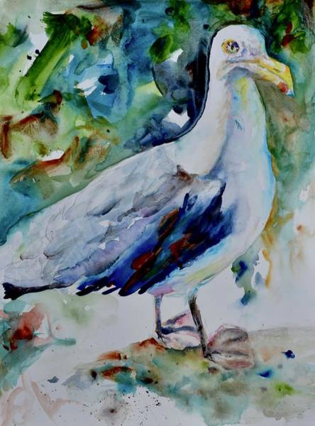 Cannon Beach Painting - Gull by Beverley Harper Tinsley